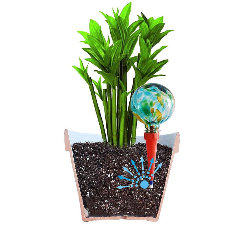avec ces boules d 39 arrosage vos plantes se suffisent hagen grote gmbh. Black Bedroom Furniture Sets. Home Design Ideas